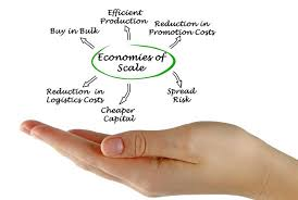 concept of leveraging economies of scale